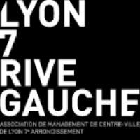 Lyon 7 Rive gauche - blog
